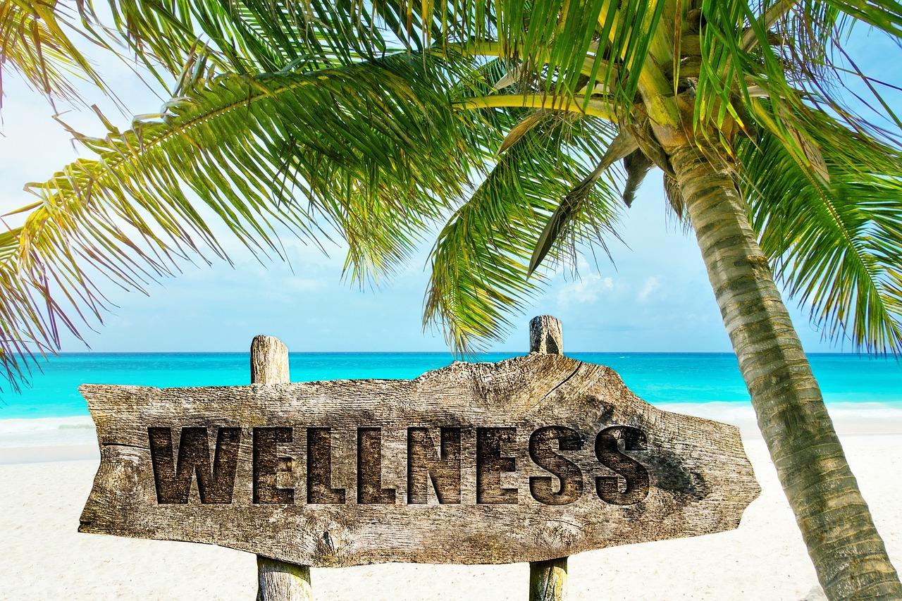 wellness-3330688_1280